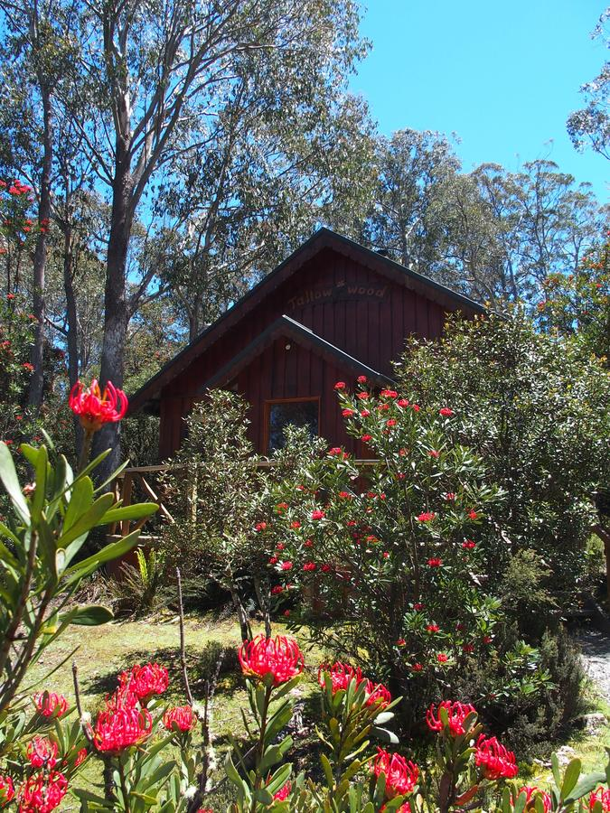 Cradle Mountain Highlanders - Accommodation Batemans Bay
