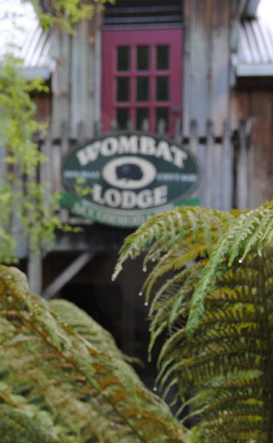 The Wombat Lodge - Accommodation Batemans Bay