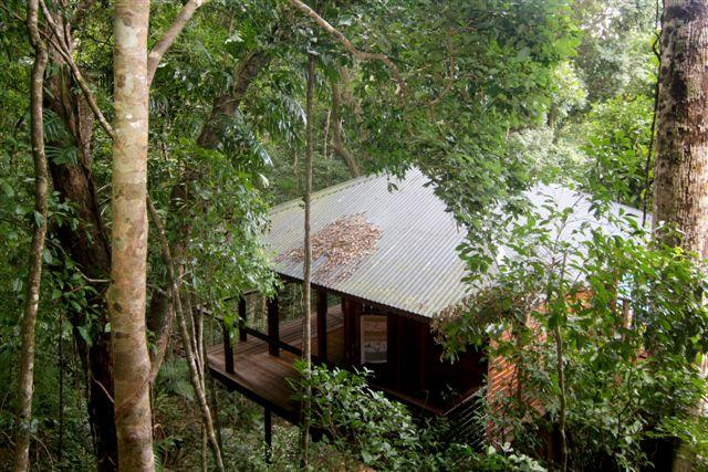 Cairns Reef  Rainforest BB - Accommodation Batemans Bay